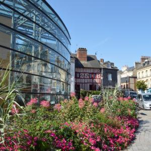 Les aménagements horticoles et l'arbre en ville